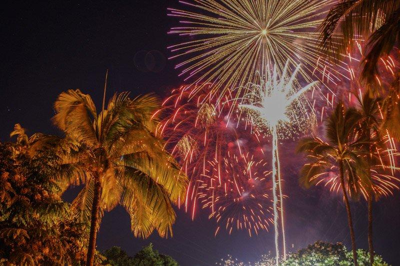 New Year's Fireworks by Jenn Findlay - Exotic Estates