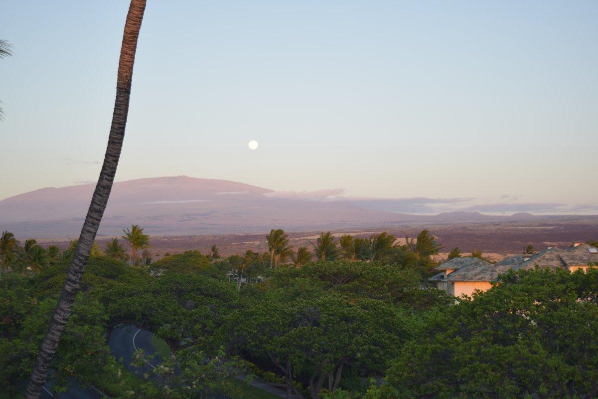 Mauna Kea View by John Di Rienzo - Exotic Estates