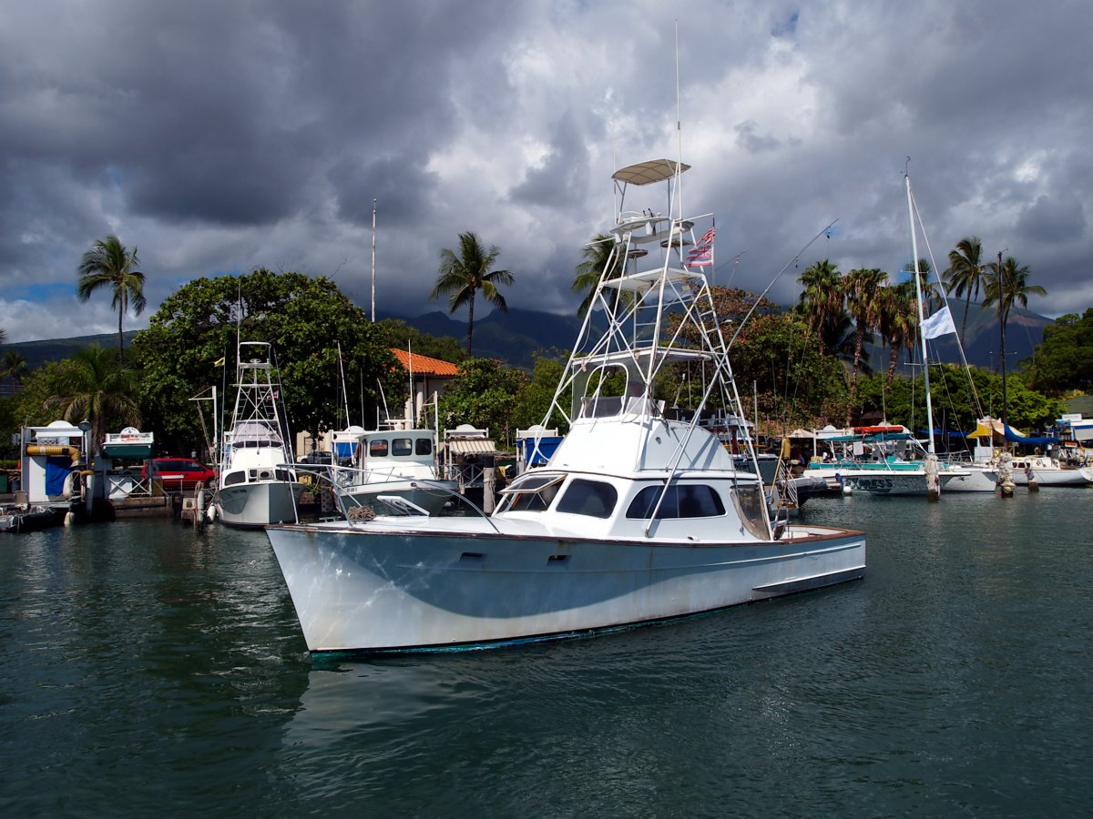 Exotic Estates Maui Sport Fishing Boat