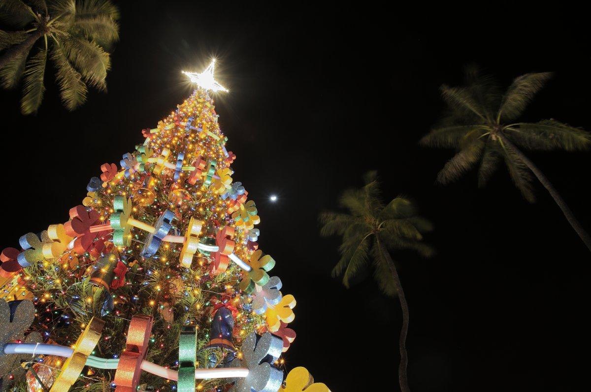 Honolulu City Lights Christmas - Exotic Estates