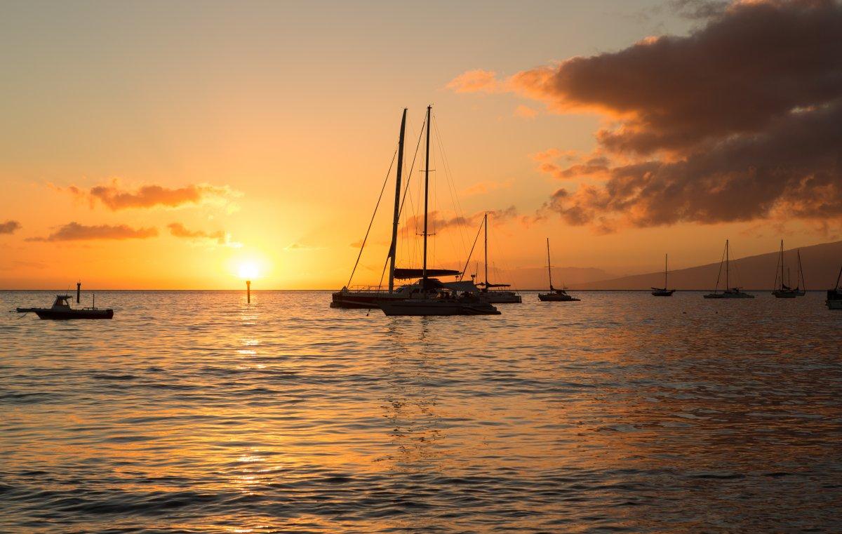Exotic Estates Maui Harbor Sailboat Sunset