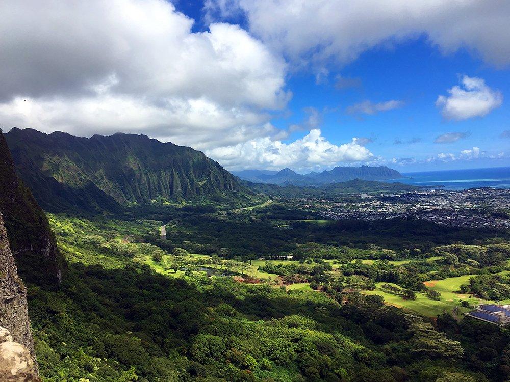 Exotic Estates Kailua Oahu by John Di Rienzo