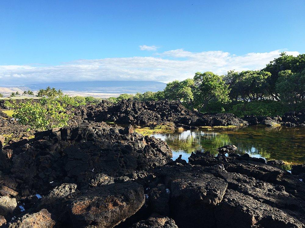 Exotic Estates Big Island of Hawaii Kohala Coast View, Kohala Coast Vacation Rentals, Exotic Estates, Vacation Rentals