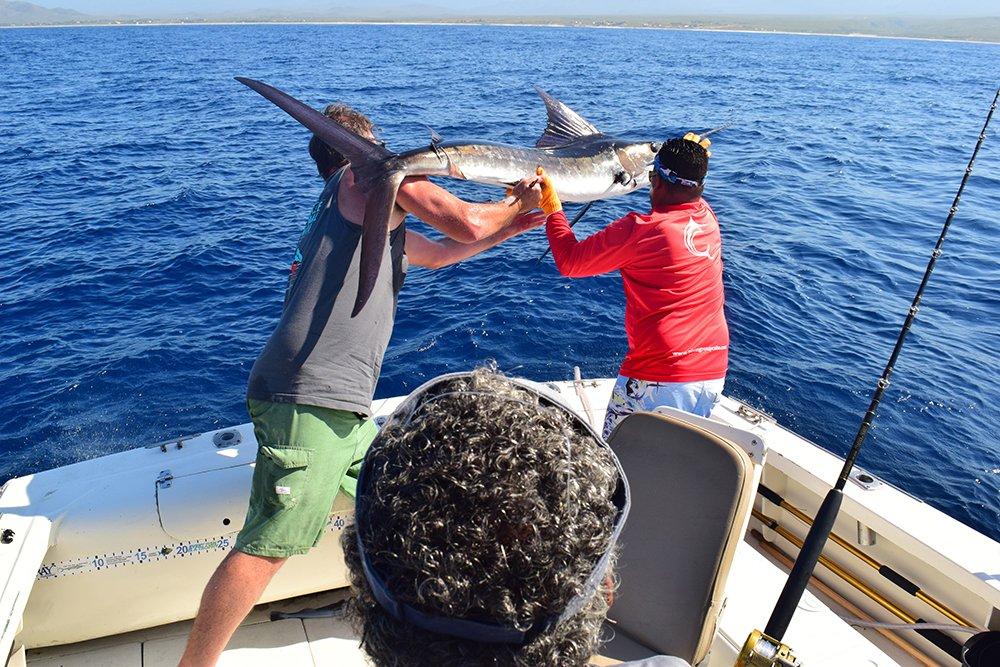 Exotic Estates Cabo San Lucas Marlin Release