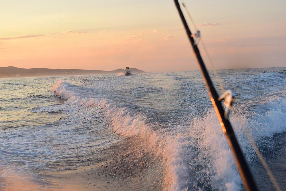Exotic Estates Cabo San Lucas Deep Sea Fishing