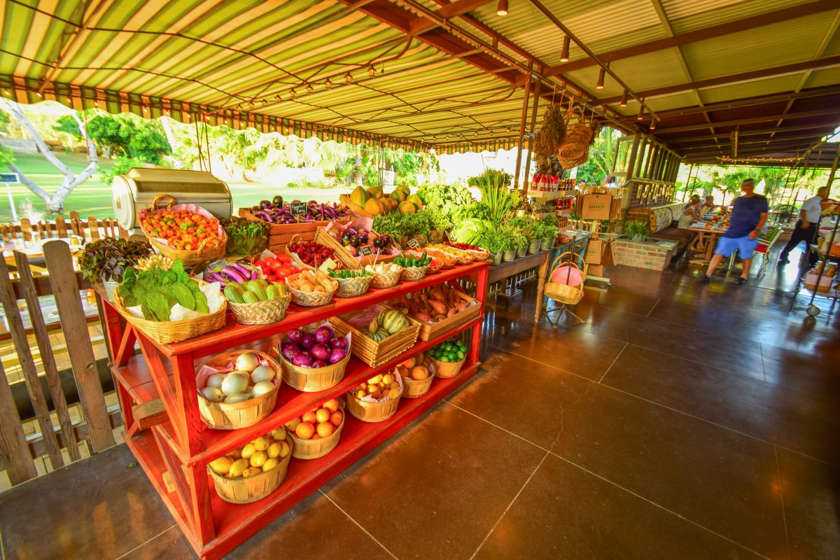 Produce Stand, Flora Farms, Farm to Table, Organic Dining San Jose Del Cabo, Exotic Estates, Vacation Rentals