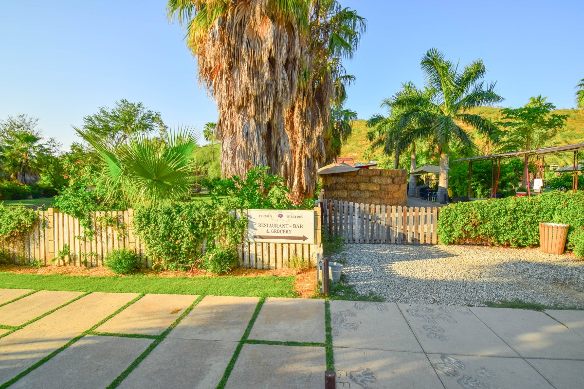 Flora Farms, Farm to Table, Organic Dining San Jose Del Cabo, Exotic Estates, Vacation Rentals