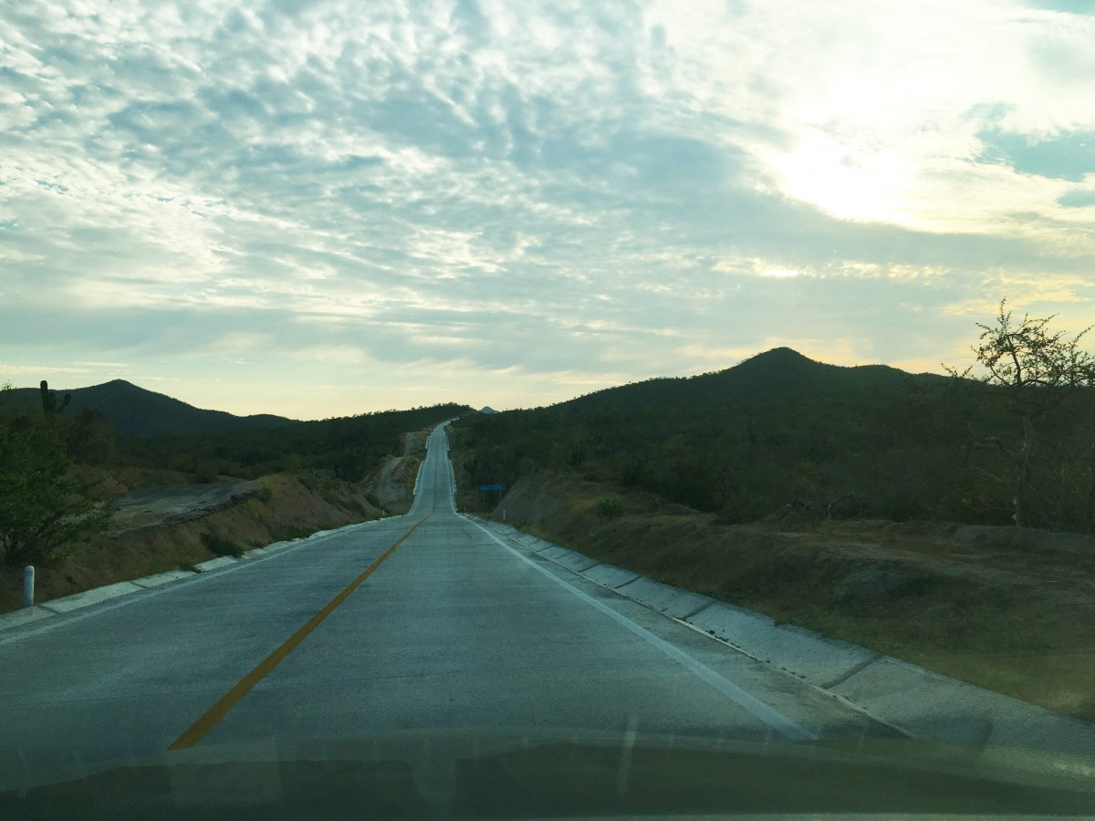 Road to Surf, Los Cabos Surfing, Surf Lessons Cabo, Cabo Waves, Exotic Estates, Vacation Rentals