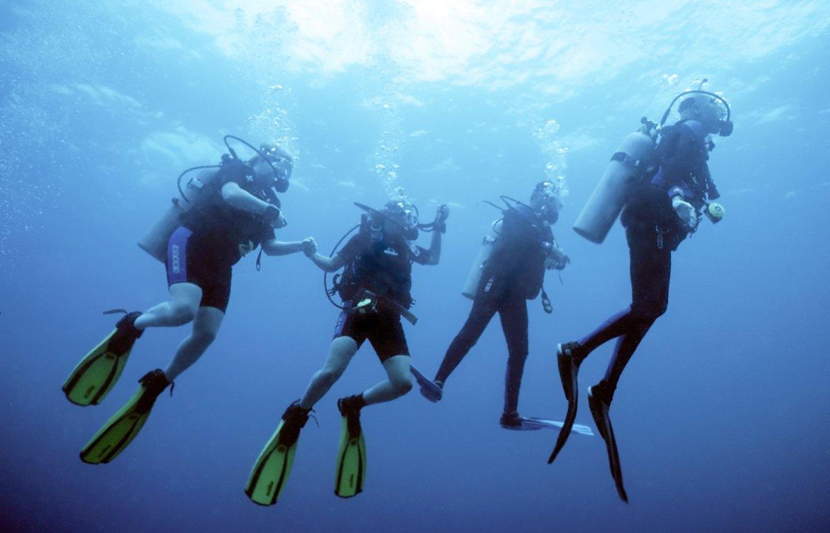 Hula Girl Snorkeling Tour, Scuba Diving, Exotic Estates, Vacation Rentals