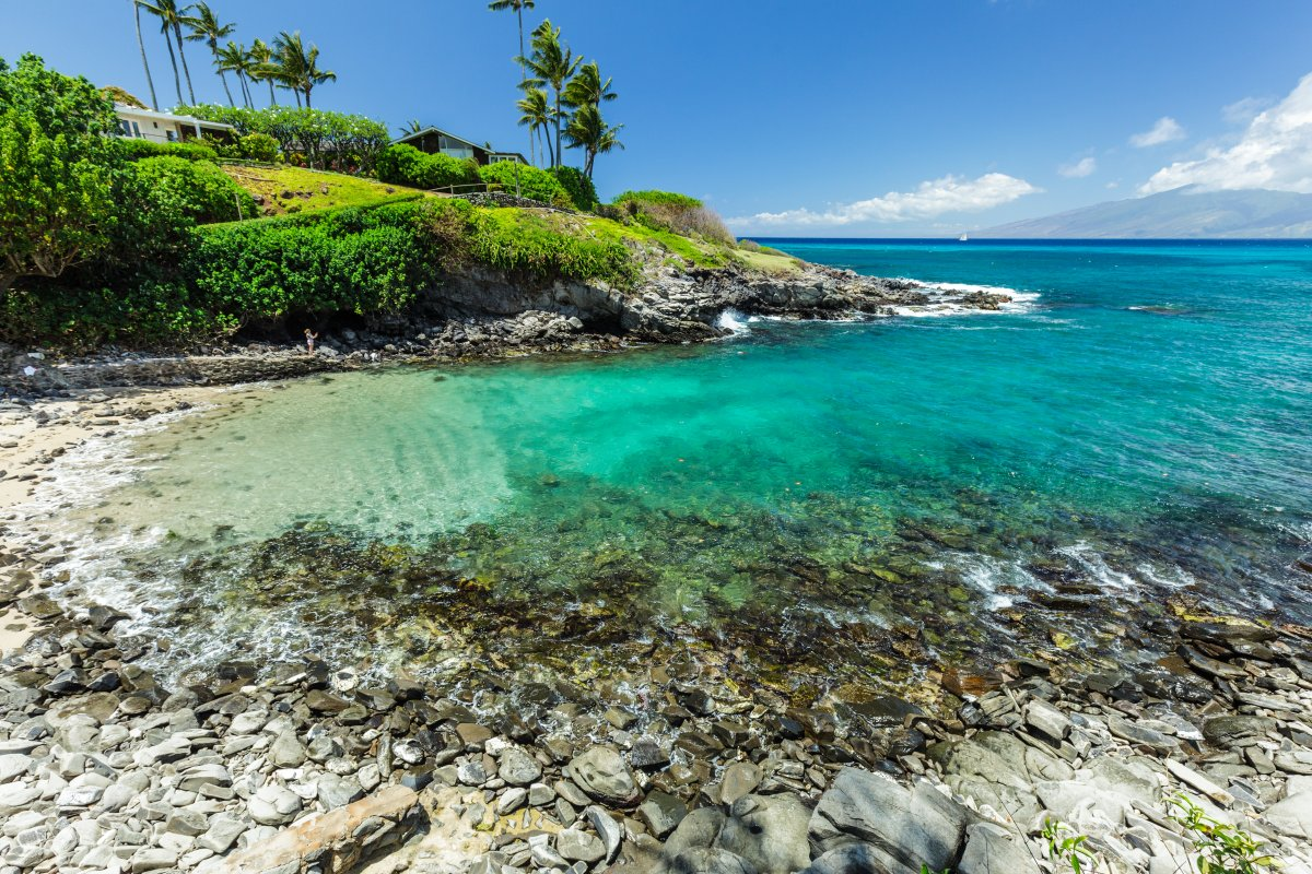 Napili Bay Maui Beach Guide