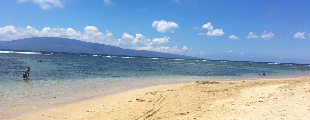Baby Beach West Maui