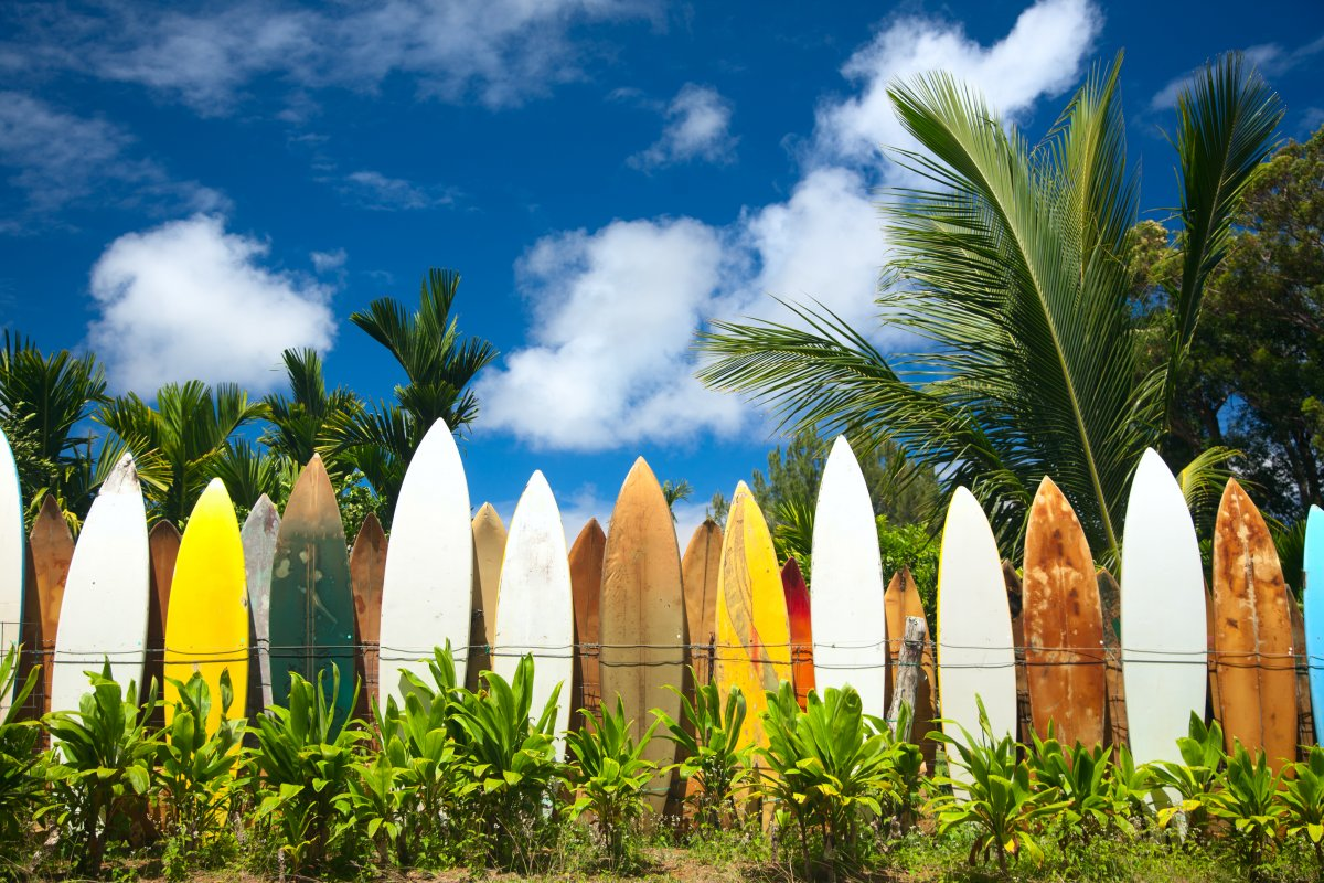 Surfing in Maui, Exotic Estates Vacation Rentals, Hawaii Surfing
