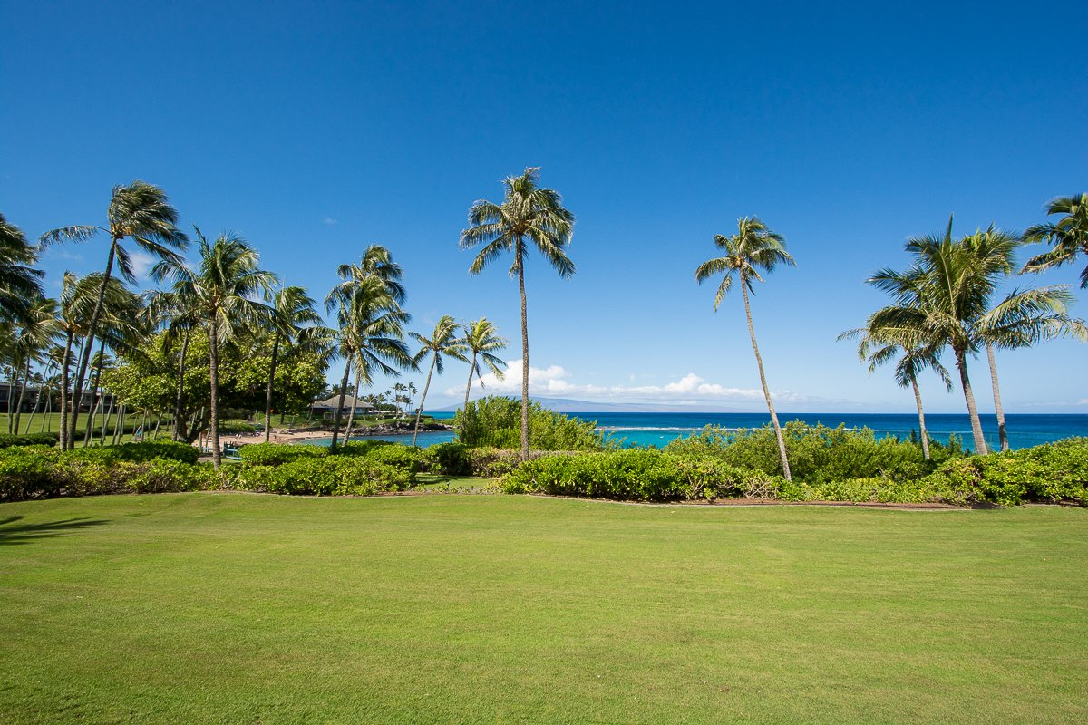 Exotic Estates Vacation Rental Maui Inspection Kapalua Montage Condos