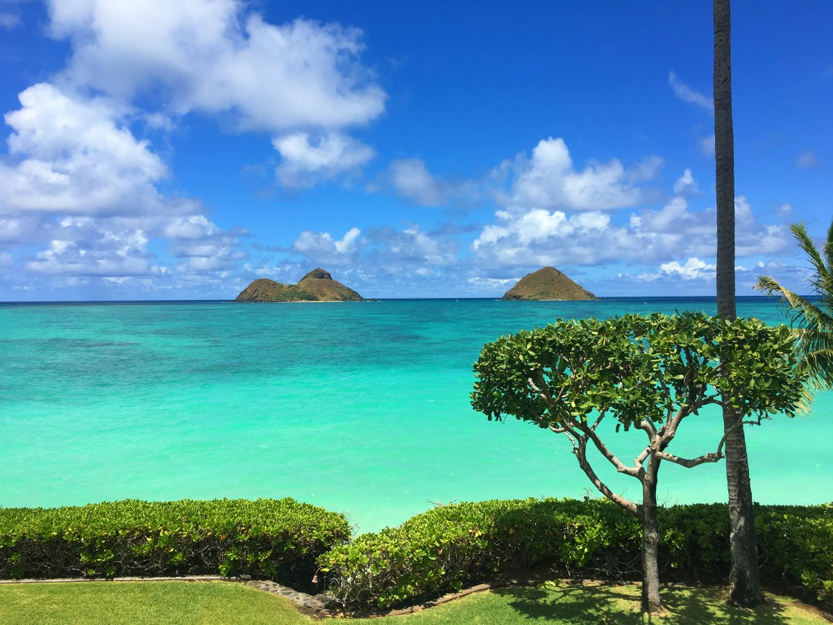 Exotic Estates Oahu Villa - Paul Mitchell Lanikai Villa - Mokes View