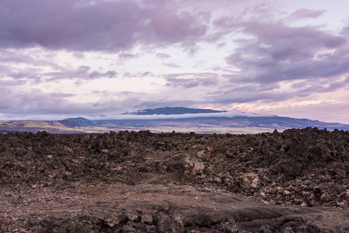 Exotic Estates Big Island Inspection Tours Lava Rock