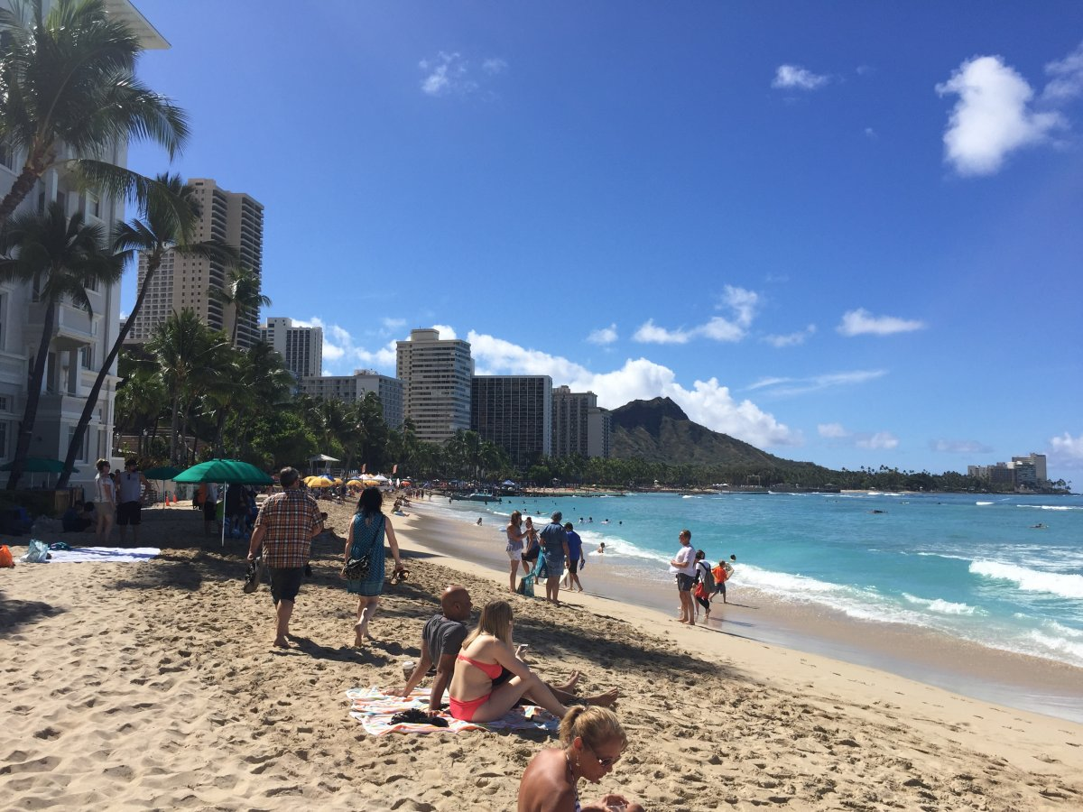 Exotic Estates Waikiki Beach Pic