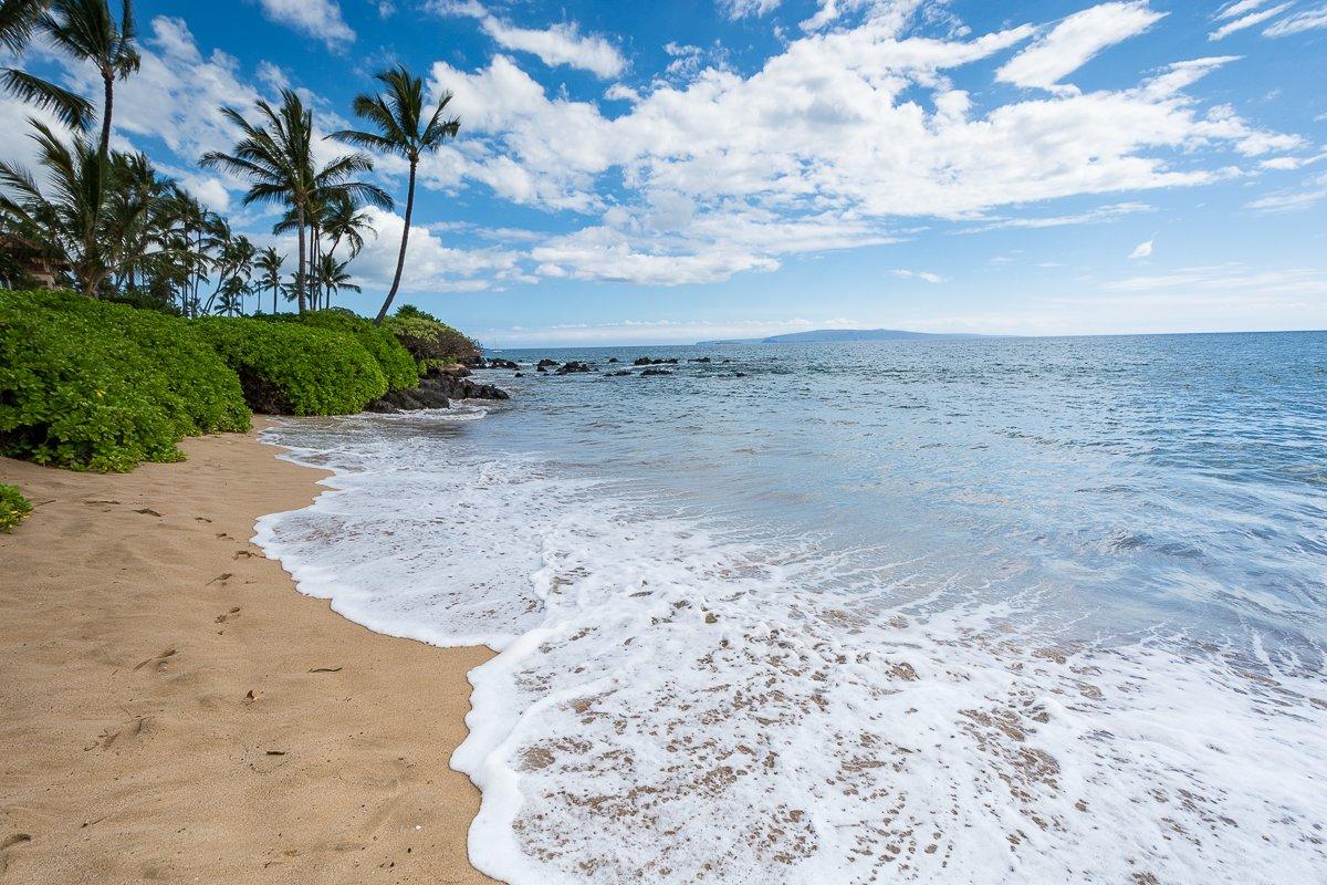 Exotic Estates Maui Kihei and Paia