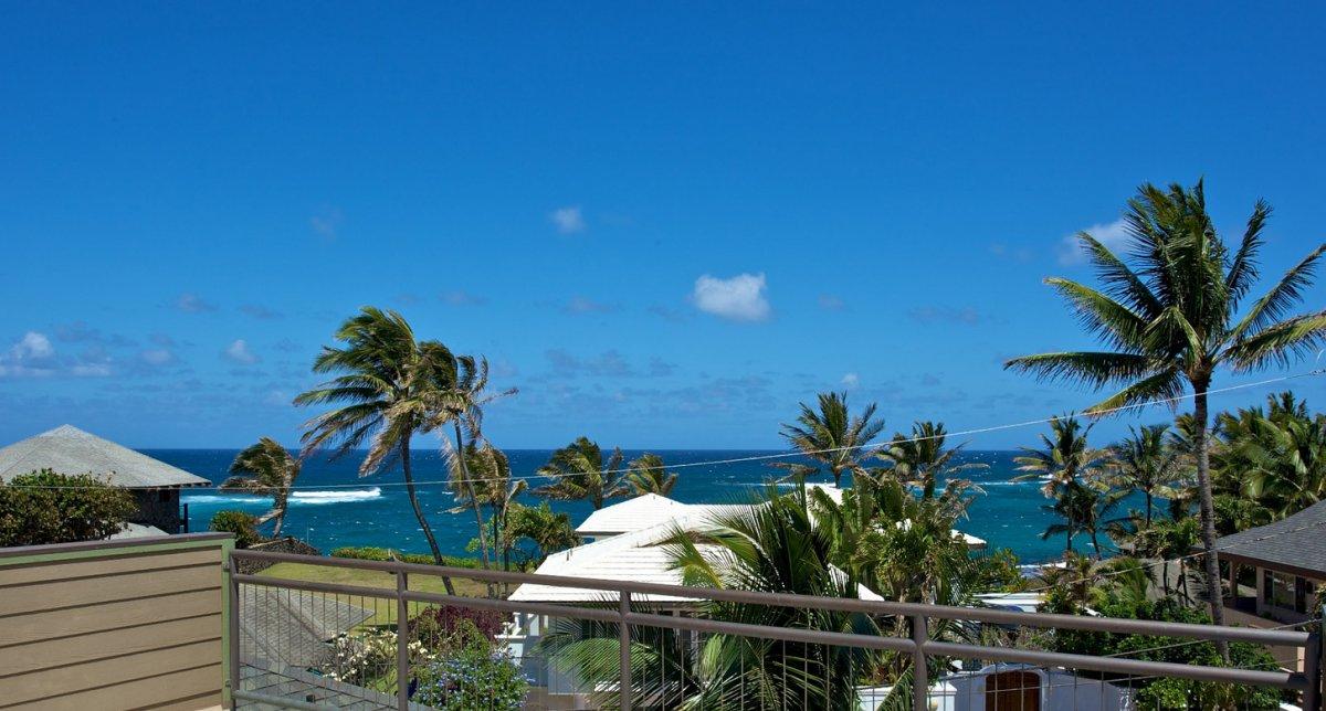 Maui Winds Exotic Estates Paia