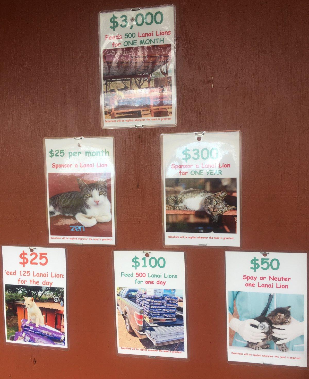 John Di Rienzo - Lanai Cat Santuary - Donations