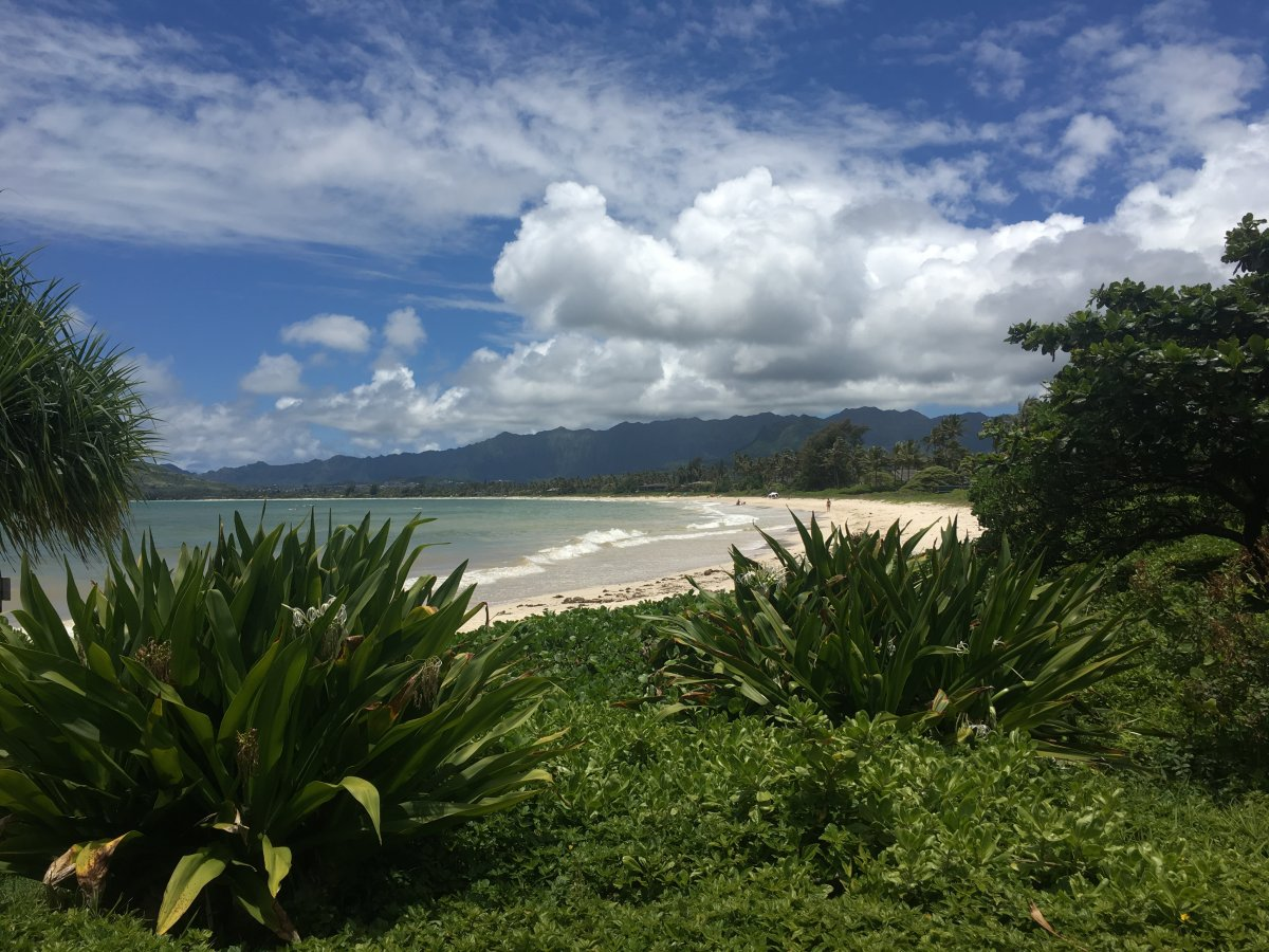 Kailua Beach Oahu - Exotic Estates - by John Di Rienzo