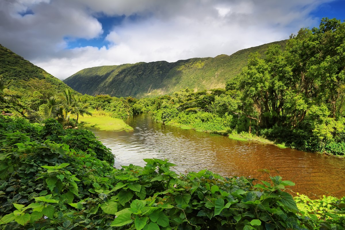 Waipio Valley Big Island River - Exotic Estates