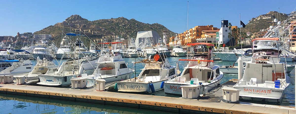 Cabo San Lucas Harbor - Exotic Estates - John Di Rienzo