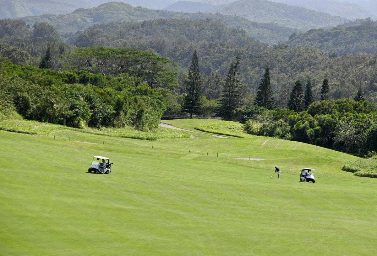 Maui Golf - Exotic Estates