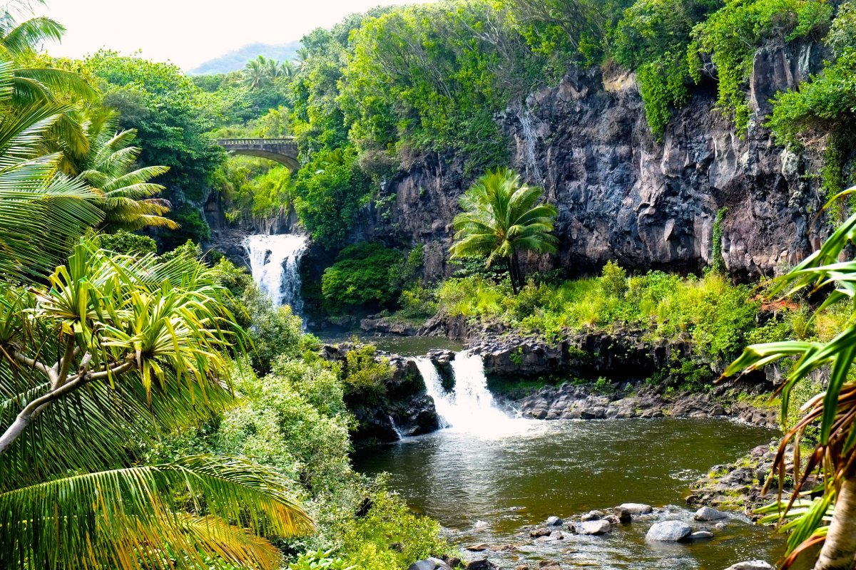 Maui - Sacred Pools - Exotic Estates (stk)