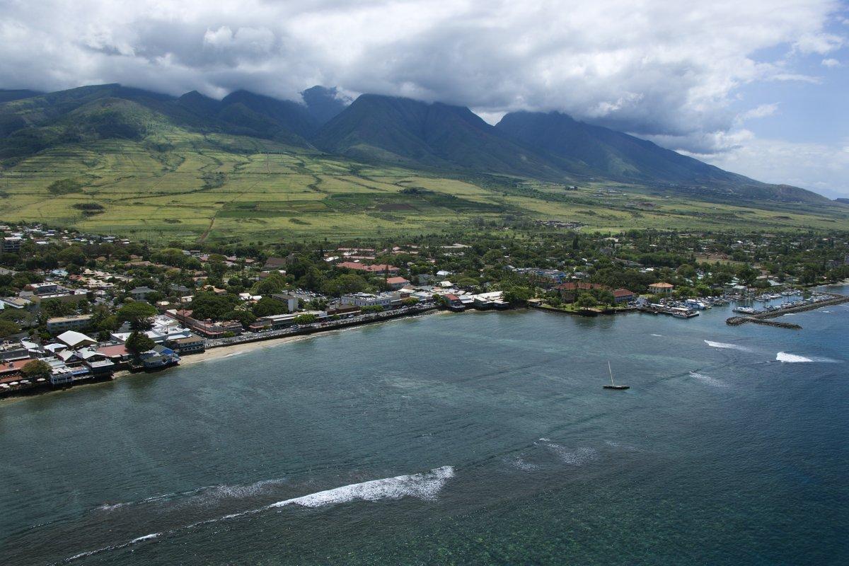 Maui - Exotic Estates (Stk)