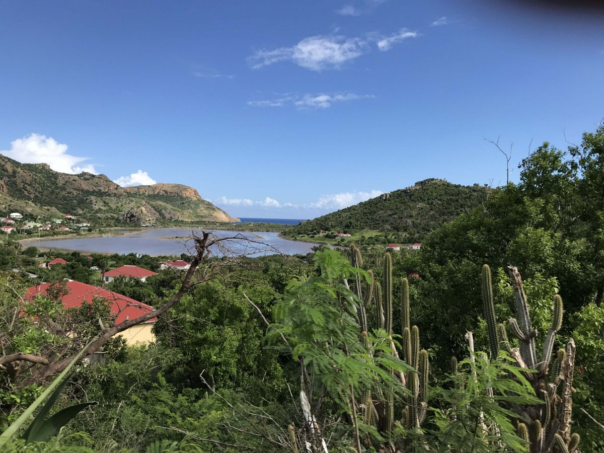 Saline St. Barth - Exotic Estates - by John Di Rienzo