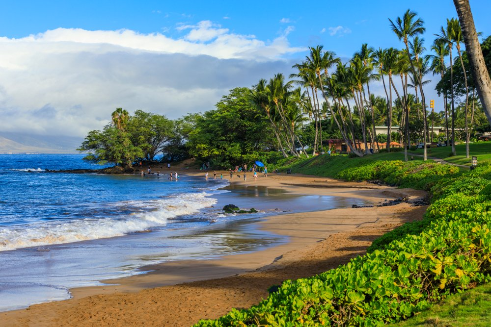 Maui Vacation Rental, The Beach Boys, Exotic Estates