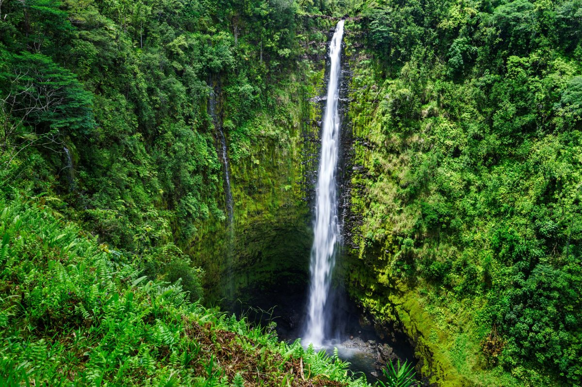 Akaka Falls Big Island of Hawaii