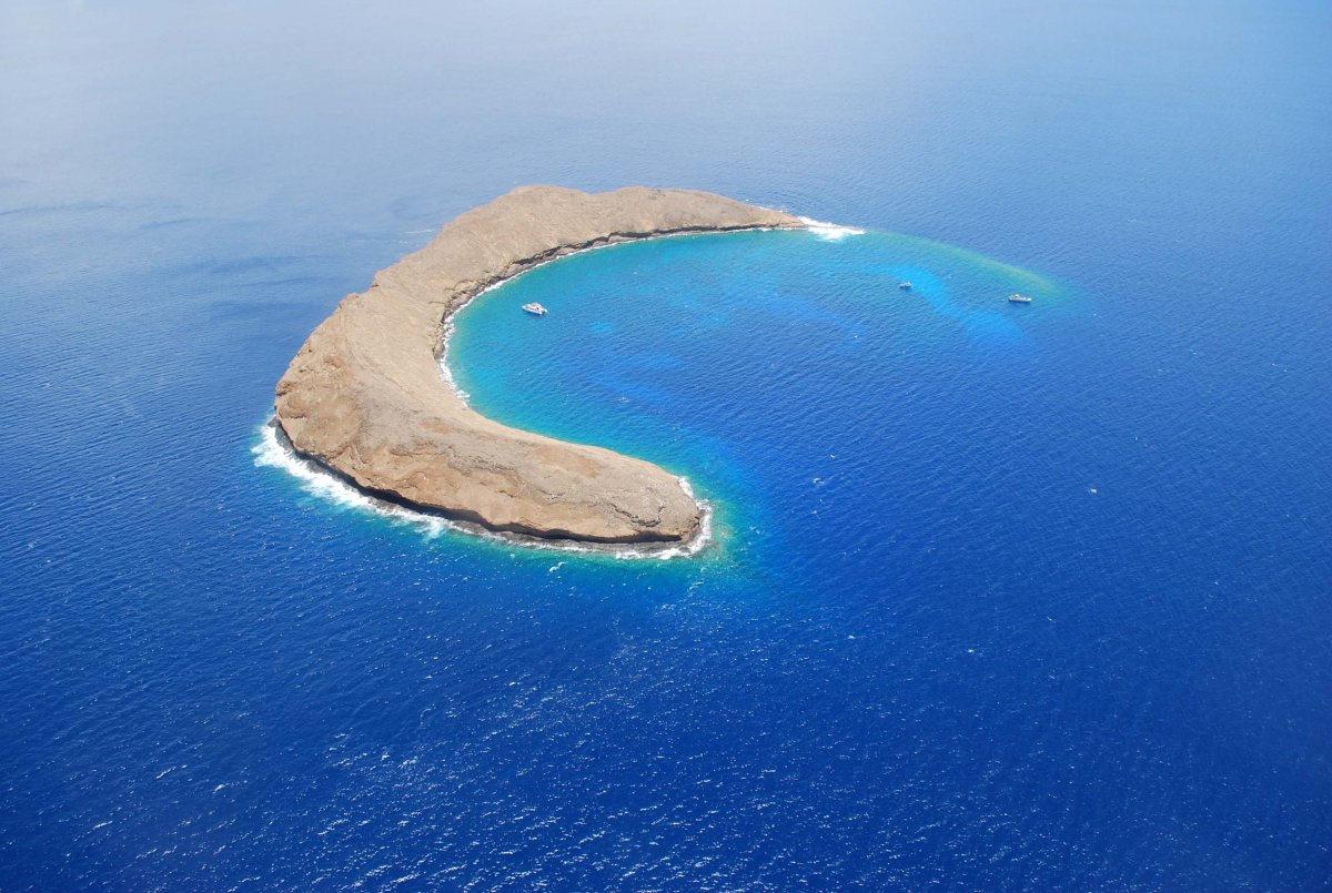 Molokini Crater Exotic Estates Maui