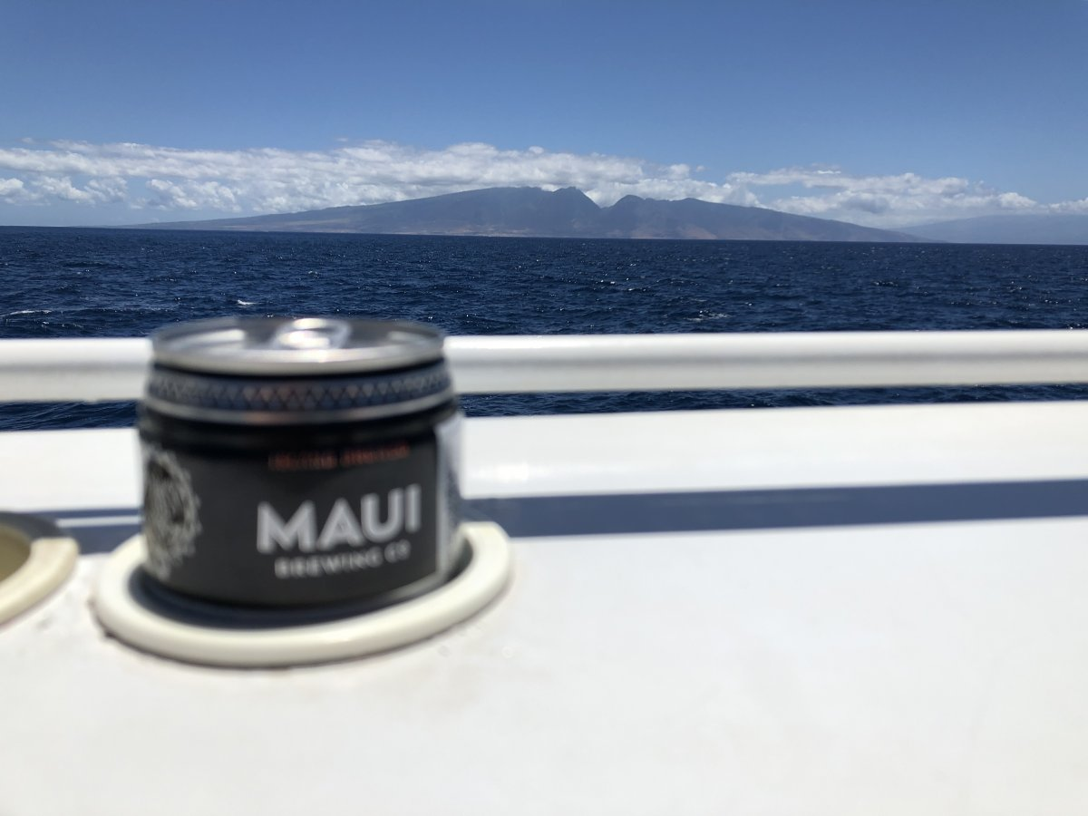 Snorkeling on Maui with Quicksilver - Exotic Estates