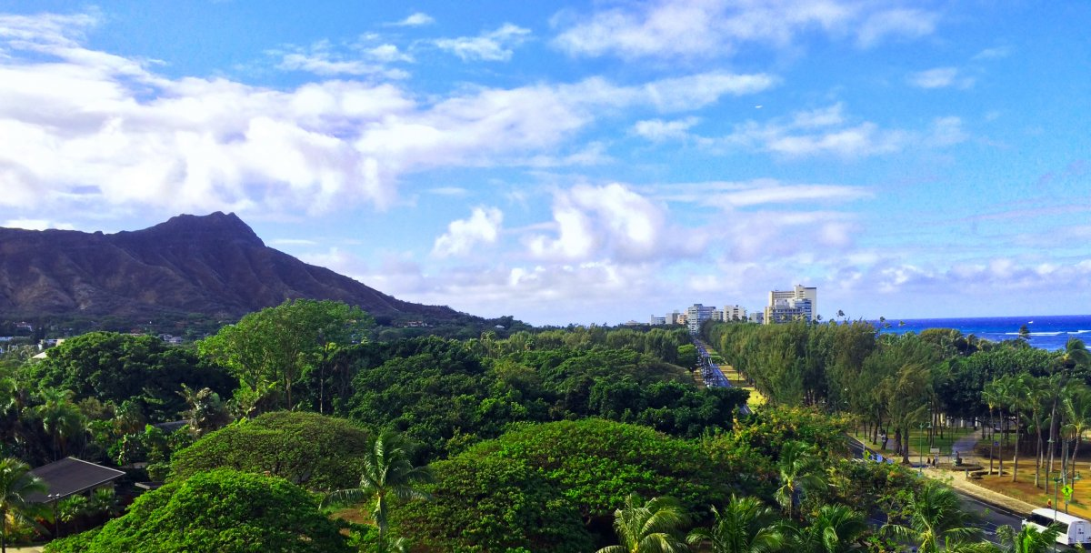 Kapiolani Park Oahu