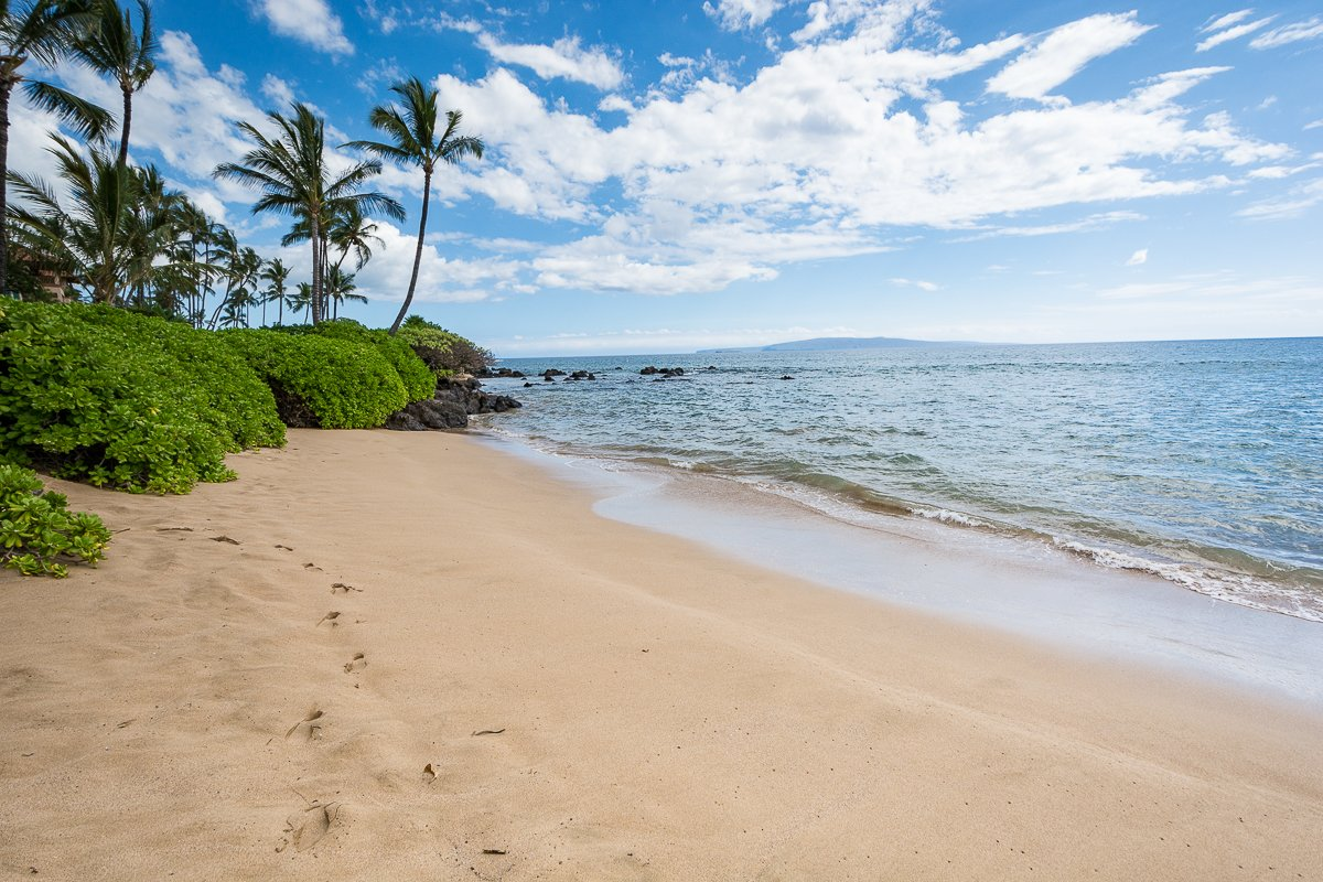 Maui Winter Precautions