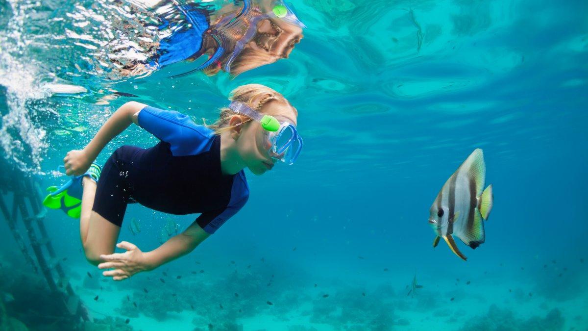 Snorkeling in Hawaii