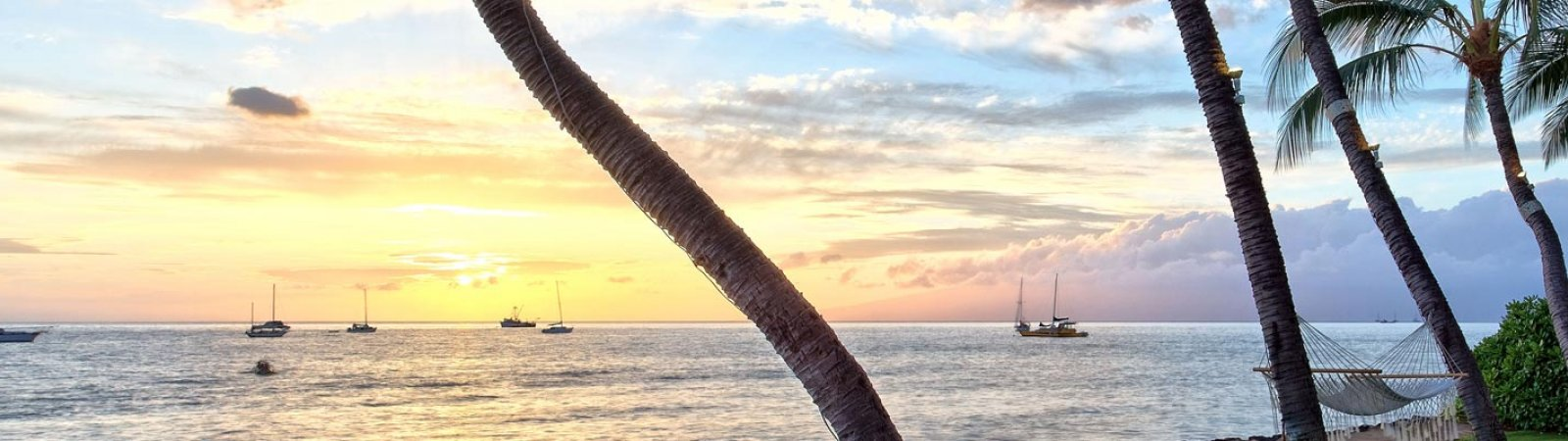 A Guide to Maui