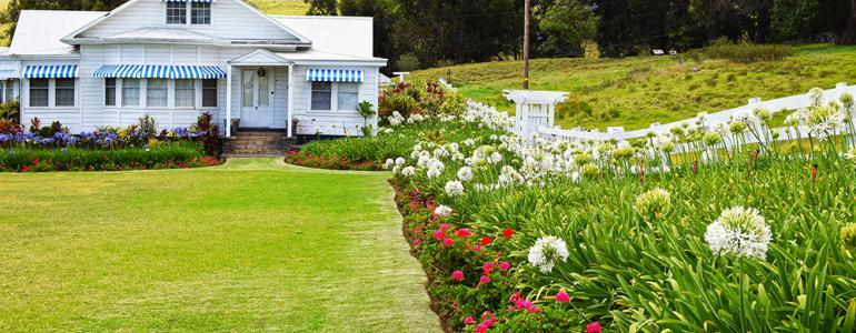Renting a Home on the Kohala Coast - Mauna Kea to Waimea