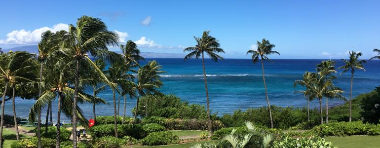 Popular Activities on Maui for Luxury Travelers