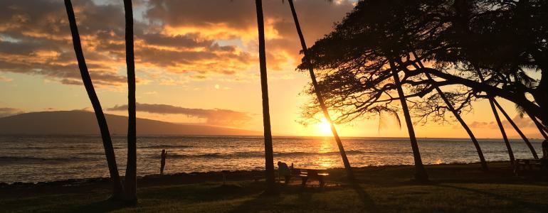 Sarah's Top 5 Maui