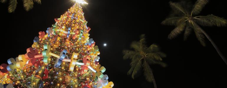 Top 10 Things To Do During the Holidays in Hawaii
